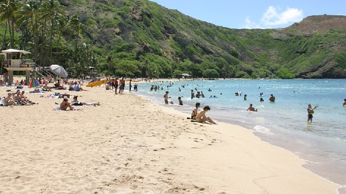 hanauma-bay-beach-park